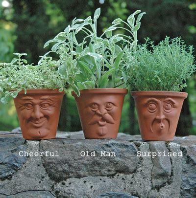 face planters herb pots pots with faces english terracotta pots