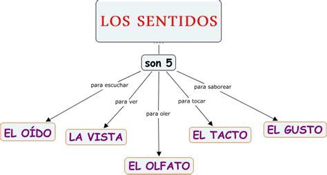 los 5 sentidos de 8426386830 los sentidos