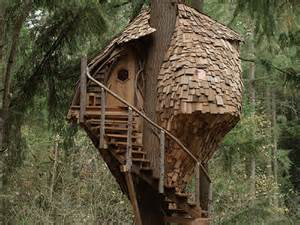 onmilwaukee tv animal planet s treehouse
