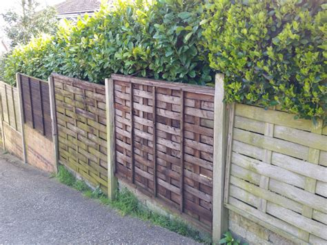 Wooden Garden Fence All About Wooden Garden Fence Maintenance