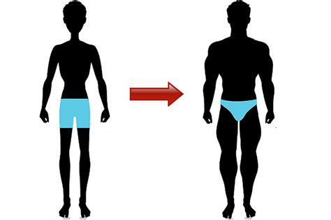 How To Gain by Guys Guide To Gaining Weight