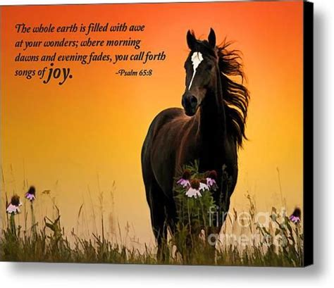 Horse Wall Murals 17 best images about horses and bible verses on pinterest