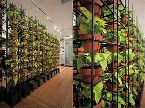 wall garden indoor green your walls with schiavello vertical gardens