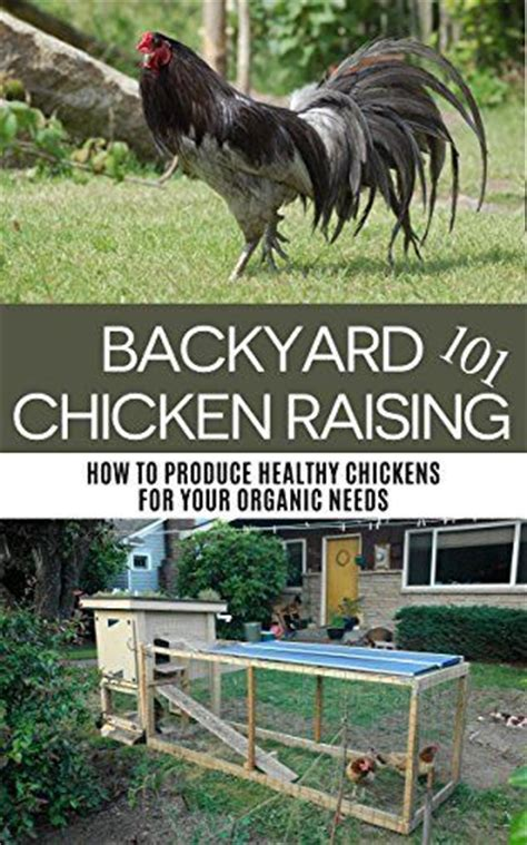 Backyard Chicken Raising 59 Best Survival Food And Gear Images On Survival Gear Survival Skills And Bushcraft
