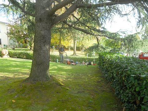 manutenzione giardini manutenzione giardini eugenio ciandri giardinaggio