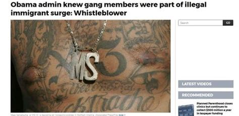 letter of administration senate hearing examines scourge of ms 13 posts 1378