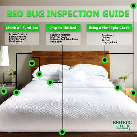 how to check hotel for bed bugs how to check for bed bugs in hotel rooms and other public