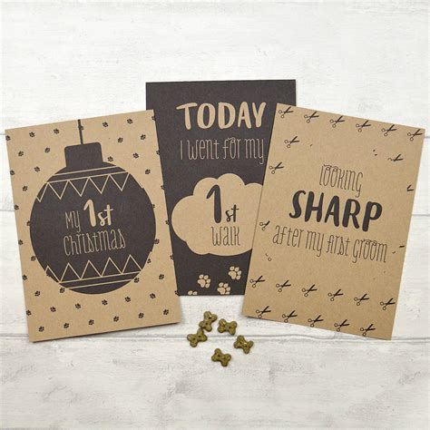 puppy milestones puppy milestone cards by pink and turquoise notonthehighstreet