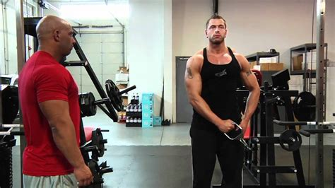 arm cable lateral raise bodybuilding wizard