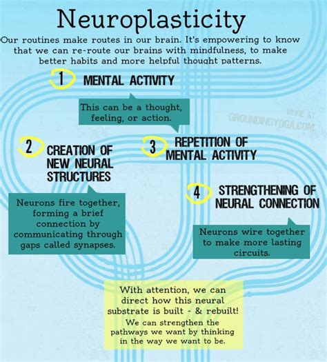 get it thought therapy for healing the stuff books 25 best ideas about neuroplasticity on
