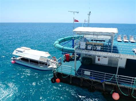 glass bottom boat whitsunday islands the pontoon and glass bottom boat picture of cruise