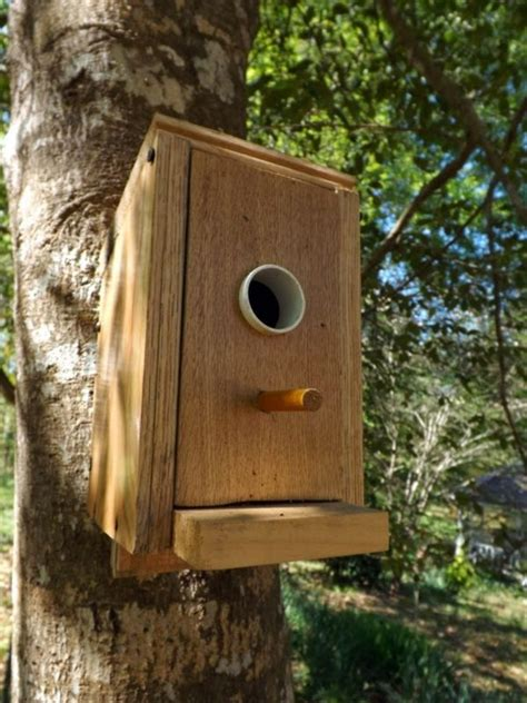 building bird houses build bird house itself you contribute to wildlife
