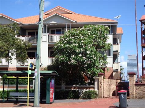City Garden Apartments by City Park Apartments Updated 2017 Hotel Reviews Price Comparison Brisbane Australia
