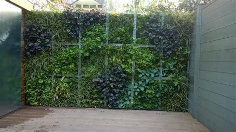 afscheiding tuinen maken afscheiding tuin planten ek84 belbin info