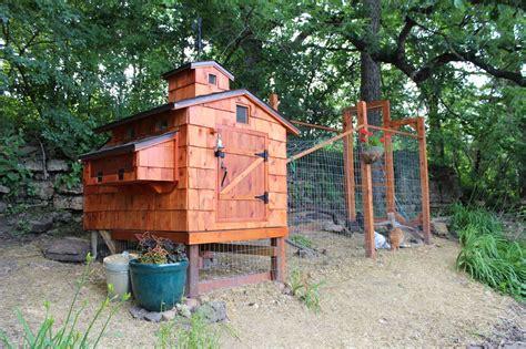 Backyard Chickens Davenport Iowa Iowa Coop Backyard Chickens Community