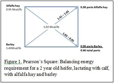 Pearson Square Worksheet by Pearson Square Worksheet The Large And Most