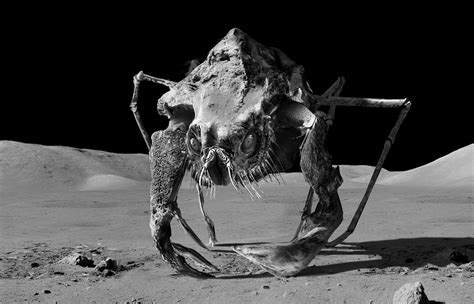 true stories of macabre monstrous creatures monstrous monsters books moon spiders apollo 18 pics about space