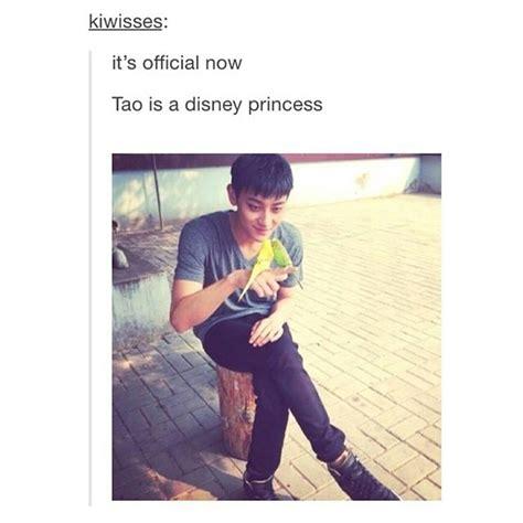 Tao Meme - tao exo meme disney princess
