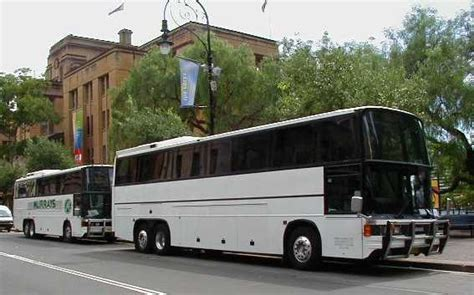 australia showbus photo gallery murrays coaches