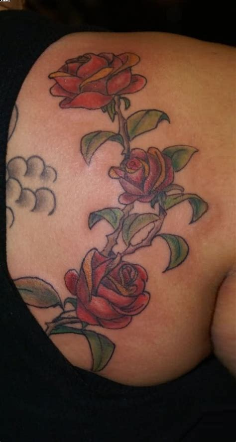 rose and vine tattoos designs 40 most beautiful vine tattoos designs pictures images