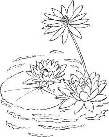 pad coloring pages coloringan lily sketch template