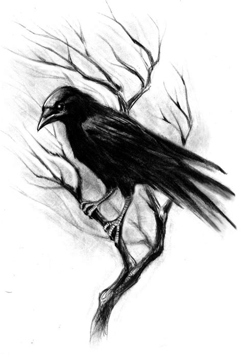 tattoos of crows 28 best crows images on ravens designs