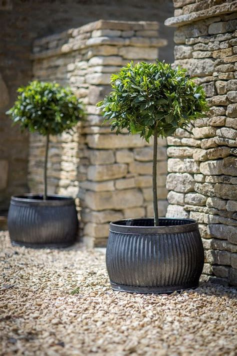 Galvanized Metal Planters Large by Planters Pots Galvanized Metal Containers With