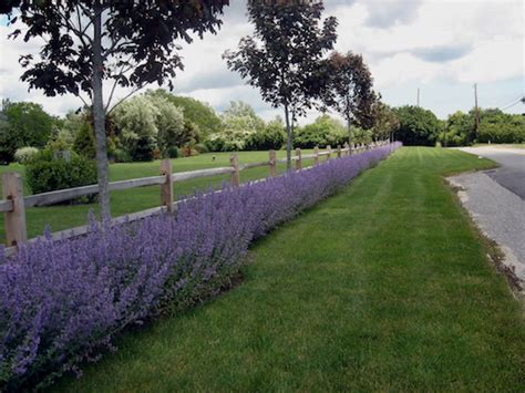 garden designs using split rail fencing pdf