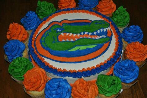 florida gator cake florida gators cake birthday ideas