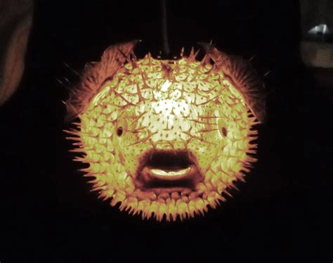 Tiki Bar Decorating Ideas Big 14 Hanging Puffer Fish Light Real Blowfish By Evasfeathers