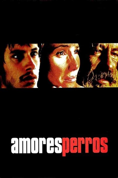watch online amores perros 2000 full movie official trailer amores perros watch movies online download free movies hd avi mp4 divx ver gratis