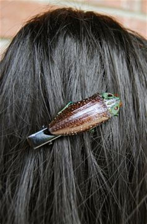 bed bugs in hair 1000 images about bug ger me insect jewelry on pinterest beetle insect jewelry