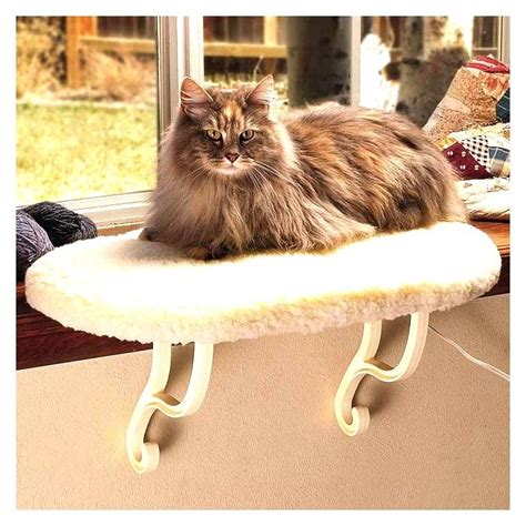 cat seat for window thermo sill heated cat window seat cat supplies