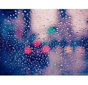 Most Beautiful Rainy Season Photography For Wallpaper