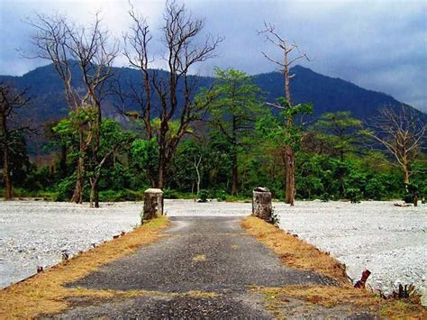buxa tiger reserve west bengal safari timings  time