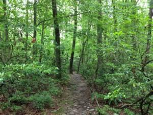appalachian trail section hiking gear list section auto