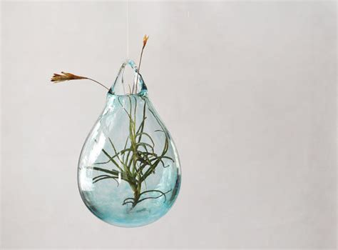 handmade hanging planters air plant vase
