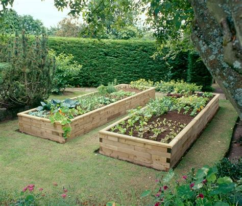 raise bed raised garden beds big w raised vegetable garden les 6