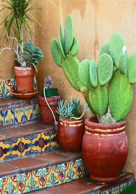 cacti  terracotta mexican home decor mexican decor