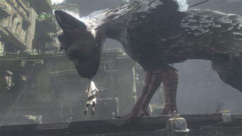 the last guardian an wallpaper the last guardian trico best games 2016 games 9379
