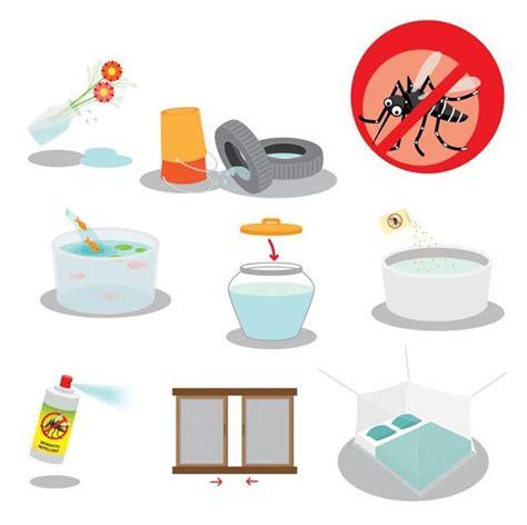 virus zika  ia bahaya  langkah pencegahan