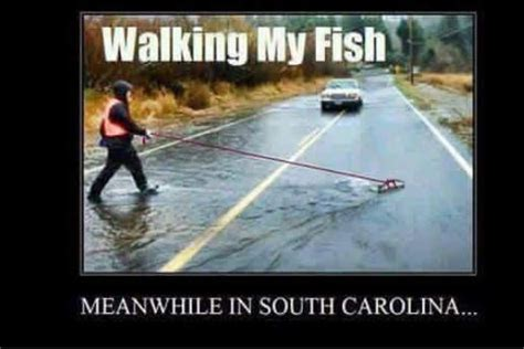 Flood Meme - charleston flooding memes taking a walk photomojo