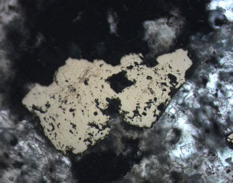 pyrite thin section figure f67 combined plane polarized transmitted and