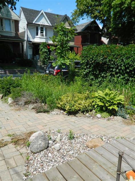 backyard cleanup services a small toronto gardening services company