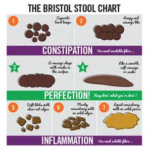 bowel movement colors healthy stool color chart pictures to pin on