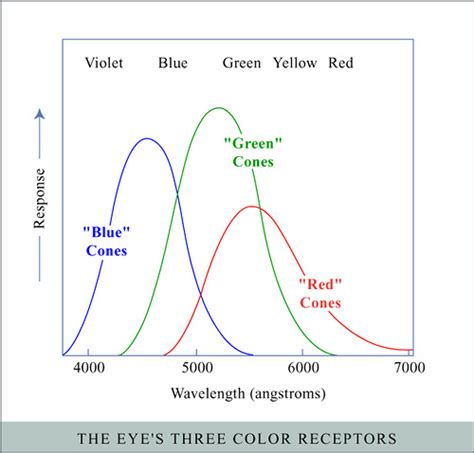 Ibs Product Find Colormark by Color Receptors Flickr Photo