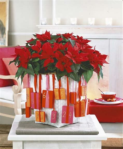 Decorating With Poinsettias by Decorate With 45 Ideas Poinsettias The Holidays