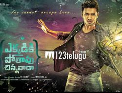 telugu movies box office 2016 box office report