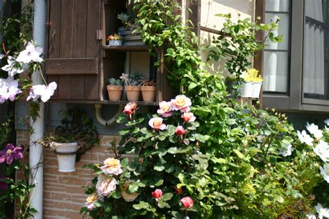 backyard japanese garden ideas japanese garden ideas