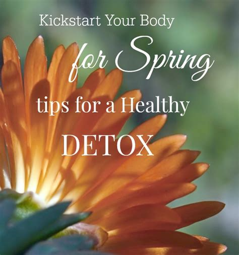 start the spring with a healthy body kickstart your body for spring tips for a healthy detox